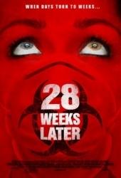 Tp Pelicula Exterminio 3 Movie 28 Weeks Later Todopuebla Com