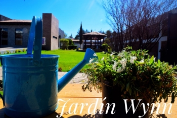 Tp fotos de bello dia en jard n wynn eventos sociales for Jardin wynn