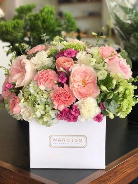 Tp Fotos De Flores Para Mamá Edición Especial Narciso